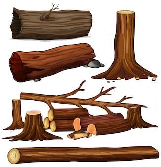 Zestaw drewna drzewa