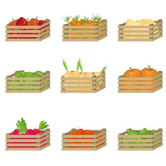 Zestaw drewnianej skrzynki ze świeżymi, naturalnymi warzywami rolnymi