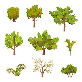 Zestaw drzew owocowych i krzewów jagodowych. rośliny rolnicze. naturalne jedzenie. motyw ogrodniczy
