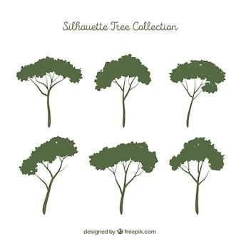 Zestaw drzew z sylwetką