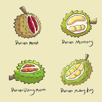 Zestaw durian ręcznie rysowane