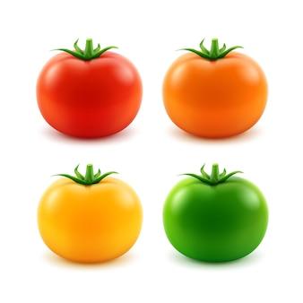Zestaw duży dojrzały czerwony pomarańczowy zielony żółty świeży cały pomidor z bliska na białym tle