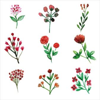 Zestaw dzikich czerwonych kwiatów i liści akwarela sezonu wiosennego na kartkę z życzeniami