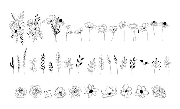Zestaw dzikich kwiatów i bukietów