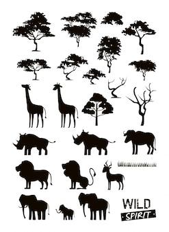 Zestaw dzikich zwierząt afrykańskich