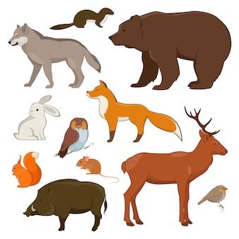 Zestaw dzikich zwierząt leśnych i ptaków. ilustracja