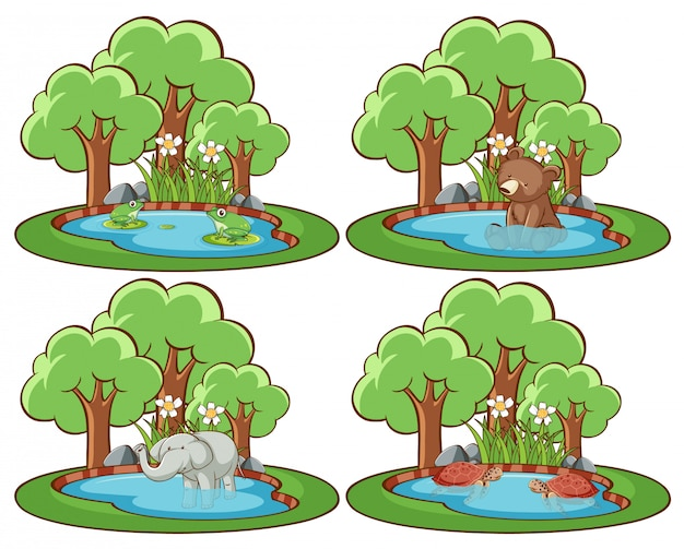 Zestaw dzikich zwierząt w parku ze stawem i drzewem