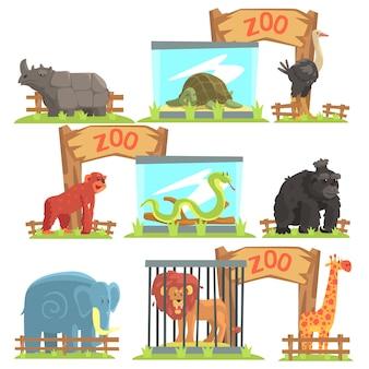 Zestaw dzikich zwierząt za szopą w zoo