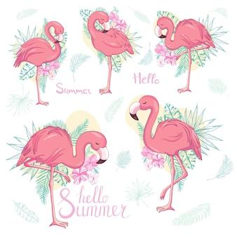 Zestaw egzotycznych flamingów na białym tle.