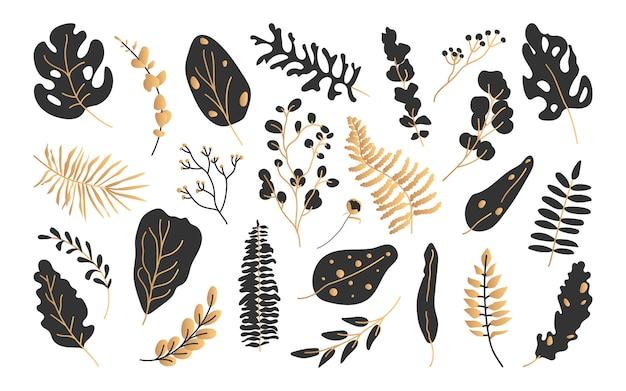 Zestaw egzotycznych liści tropikalnych z czarnego złota.