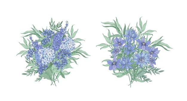 Zestaw eleganckich bukietów wykonanych z pięknych, niebieskich, dziko kwitnących kwiatów oraz izolowanych ziół kwitnących