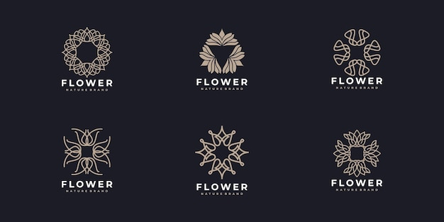 Zestaw eleganckiego projektu logo kwiatu róży linii