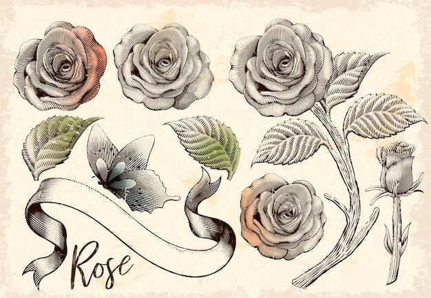 Zestaw elementów dekoracyjnych róż retro, kwiaty, motyle i wstążki w stylu trawienia cieniowania na beżowym tle