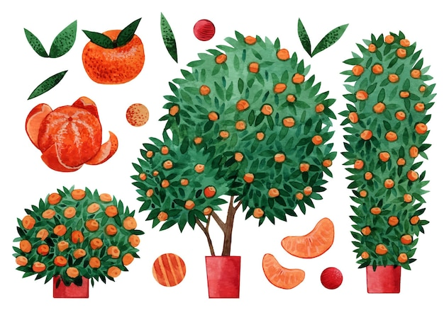 Zestaw elementów drzewa akwarela mandarynki