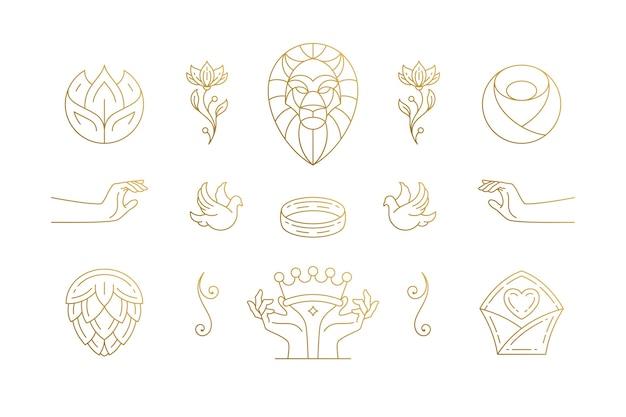 Zestaw elementów eleganckiej dekoracji linii