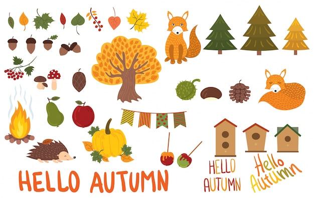 Zestaw elementów jesiennych. kolekcja jesiennych zwierząt i roślin.