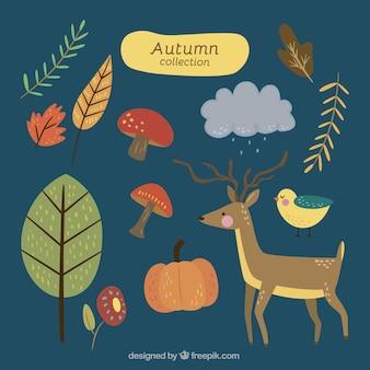 Zestaw elementów jesiennych