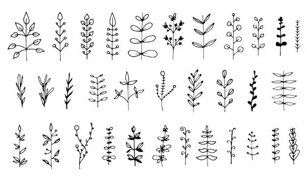 Zestaw elementów kwiatowy na białym tle. ręcznie rysowane liście do projektowania. doodle naturę