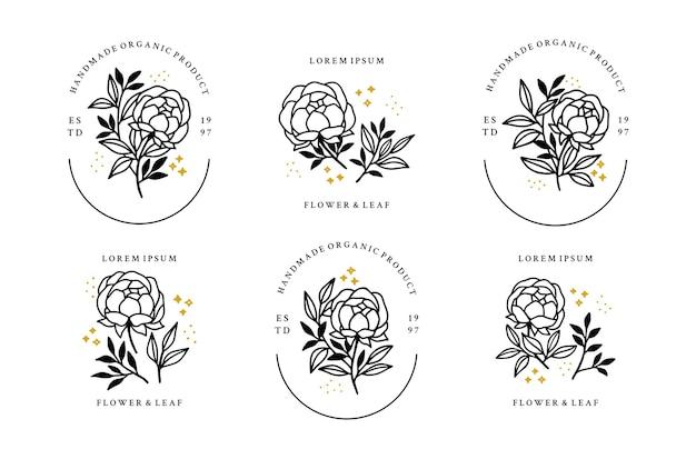 Zestaw elementów logo minimalistyczny kwiat róży, piwonia i liść ręcznie rysowane