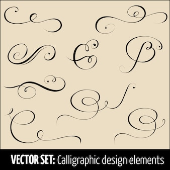 Zestaw elementów projektu kaligrafii i dekoracji strony.