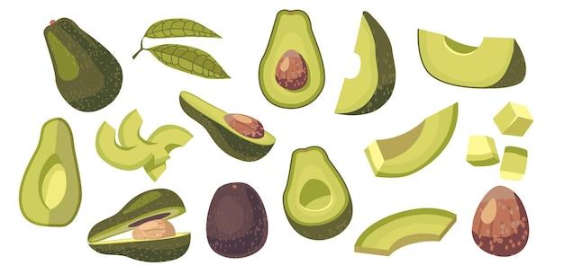 Zestaw elementów projektu składnik żywności wegetariańskiej awokado. świeże owoce lub warzywa w całości, pokrojone w kostkę lub w plasterkach, zielone liście i brązowy pit na białym tle. ilustracja kreskówka wektor