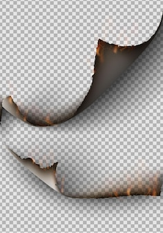 Zestaw elementów przezroczystej konstrukcji zgrywanie szablonów rozdarty papier.