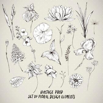 Zestaw elementów stawu kwiaty rocznika wody