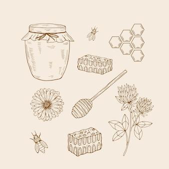 Zestaw elementów szkicu miodu