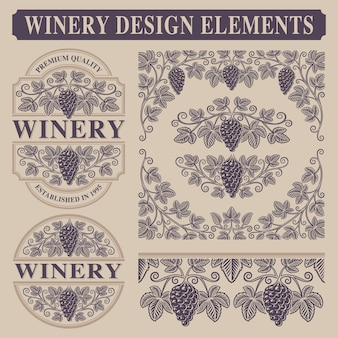 Zestaw elementów vintage do winnicy z gałęzi winogron, granic i szablon etykiety wina.