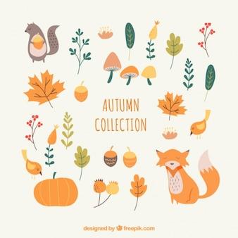 Zestaw elementów w ciepłych kolorach jesiennych