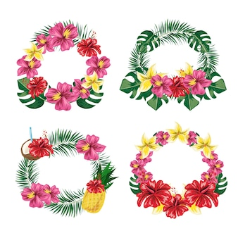 Zestaw etykiet kwiat tropikalnych liści.