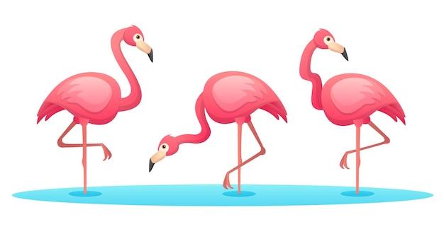 Zestaw flamingów w różnych pozach ilustracja kreskówka