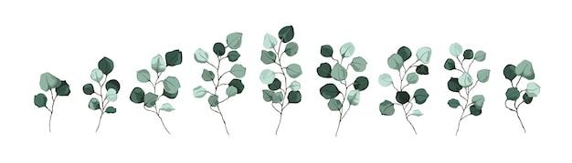 Zestaw gałązek i gałęzi
