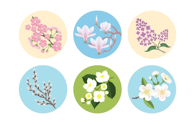 Zestaw gałęzi kwitnących wiosną