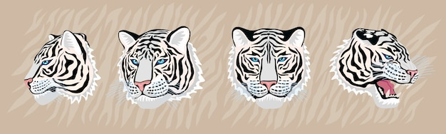 Zestaw głowy białego tygrysa ręcznie rysowane ilustracji