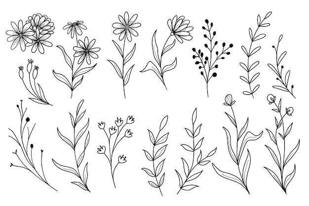 Zestaw grafiki liniowej doodle dzikiego kwiatu z liśćmi