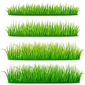 Zestaw granic świeżej zielonej trawy