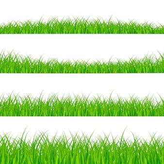 Zestaw granic trawy. panorama roślin trawiastych. granica trawy.