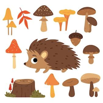 Zestaw grzybów i jeżyrośliny i zwierzęta leśne