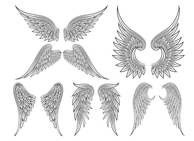 Zestaw heraldycznych skrzydeł lub anielskich skrzydeł narysowanych czarnymi liniami. ilustracji wektorowych