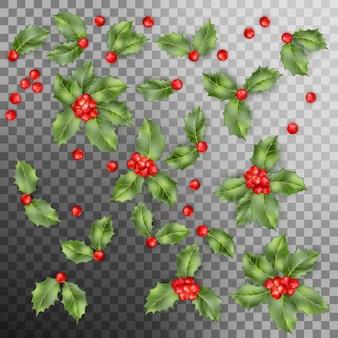 Zestaw holly berry pozostawia świąteczne dekoracje.