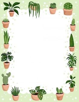 Zestaw hygge doniczkowe sukulenty rama tło. przytulne rośliny w stylu skandynawskim w stylu lagom