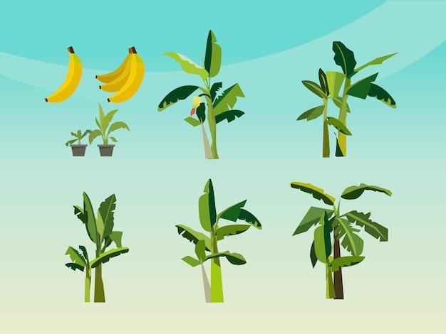 Zestaw ikon drzewa bananowego