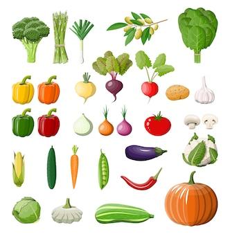 Zestaw ikon dużych warzyw na białym tle.