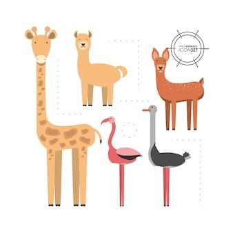 Zestaw ikon dzikich zwierząt