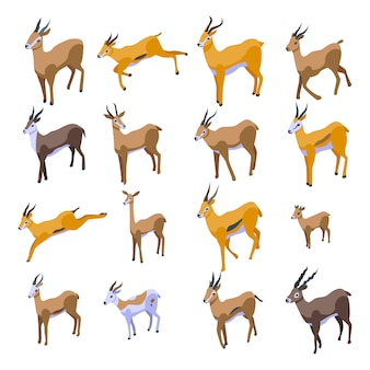 Zestaw ikon gazeli. izometryczny zestaw ikon wektorowych gazeli do projektowania stron internetowych na białym tle