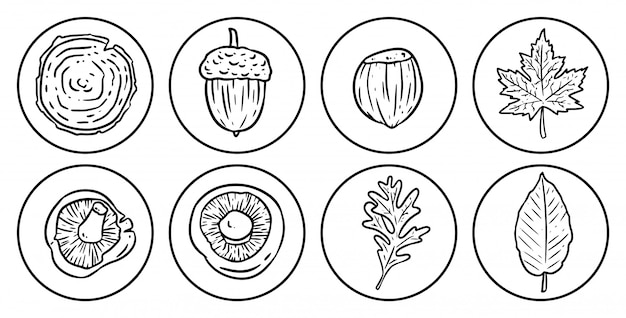 Zestaw ikon jesień kreskówka.