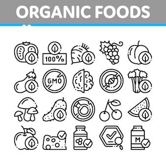 Zestaw ikon kolekcja ekologicznej żywności ekologicznej