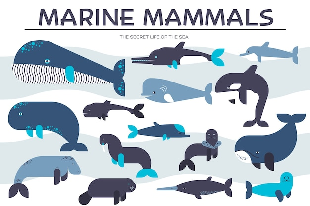Zestaw ikon kolekcji zwierząt ssaków morskich