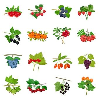 Zestaw ikon kolorowe jagody